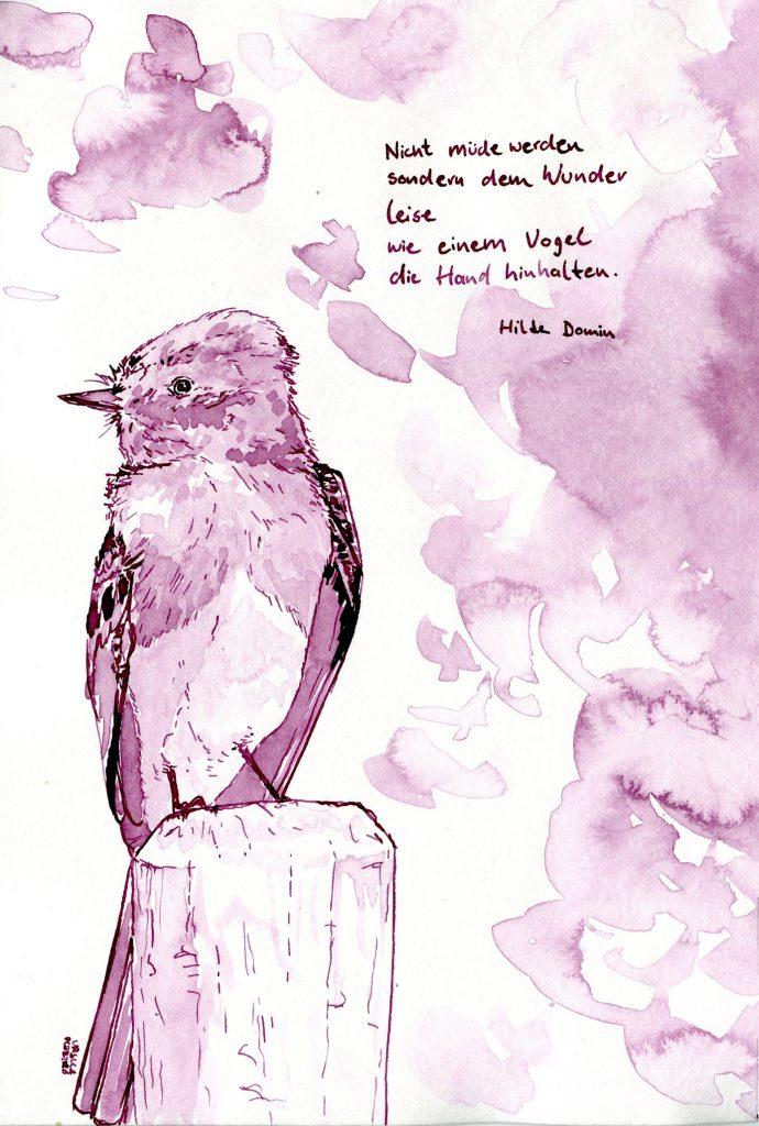 """A Bird, a Black Phoebe, sitting on a wooden stump and looking to the side, quotation says """"Nicht müde werden sondern dem Wunder leise wie einem Vogel die Hand hinhalten."""" by Hilde Domin"""